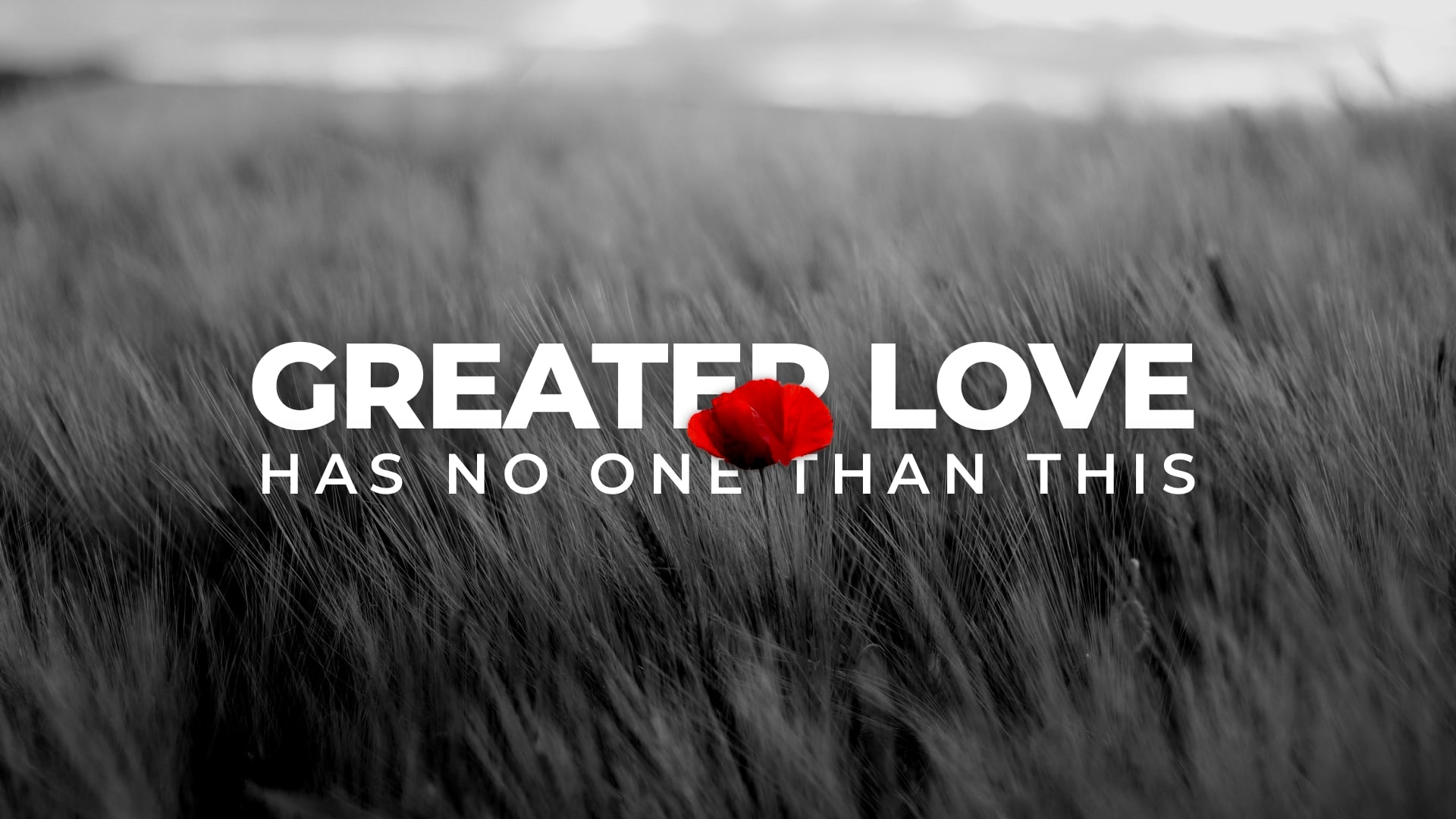 Greater Love Has No One Than This / John 15:9-14